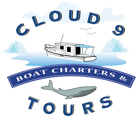 Clound 9 Boat Charter & Tours Retina Logo