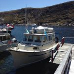 Cloud 9 Charter and Boat Tours